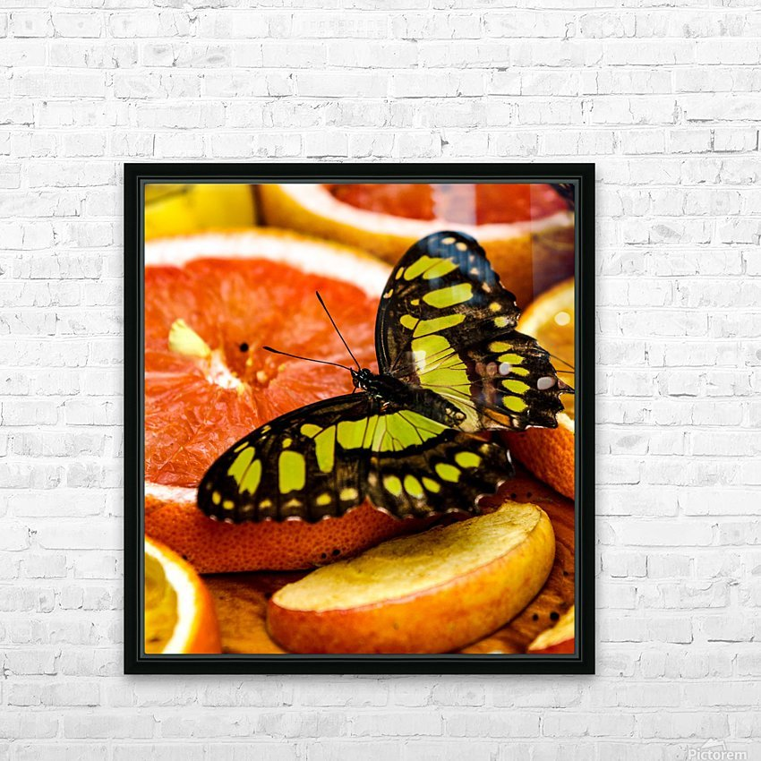 Butterfly And Oranges HD Sublimation Metal print with Decorating Float Frame (BOX)