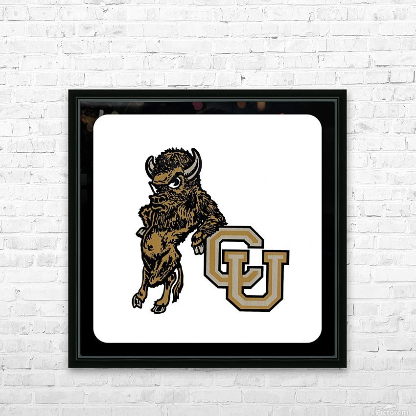vintage college mascots colorado buffalo art HD Sublimation Metal print with Decorating Float Frame (BOX)
