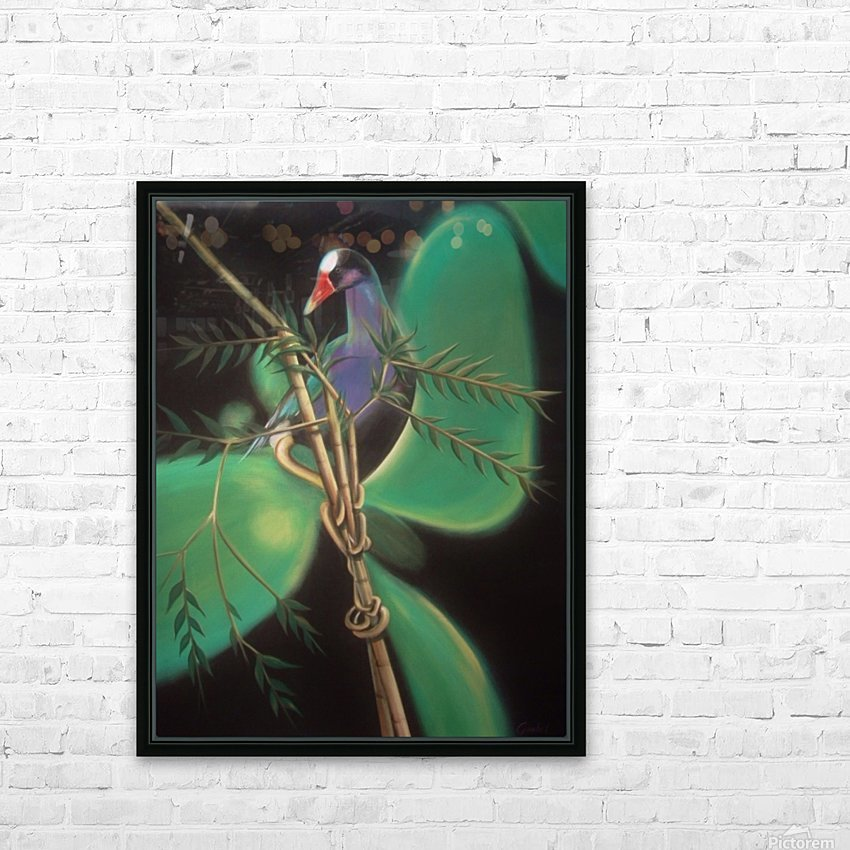 purple gallinule HD Sublimation Metal print with Decorating Float Frame (BOX)
