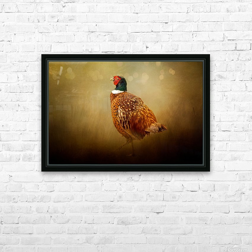 Ring Necked Pheasant HD Sublimation Metal print with Decorating Float Frame (BOX)
