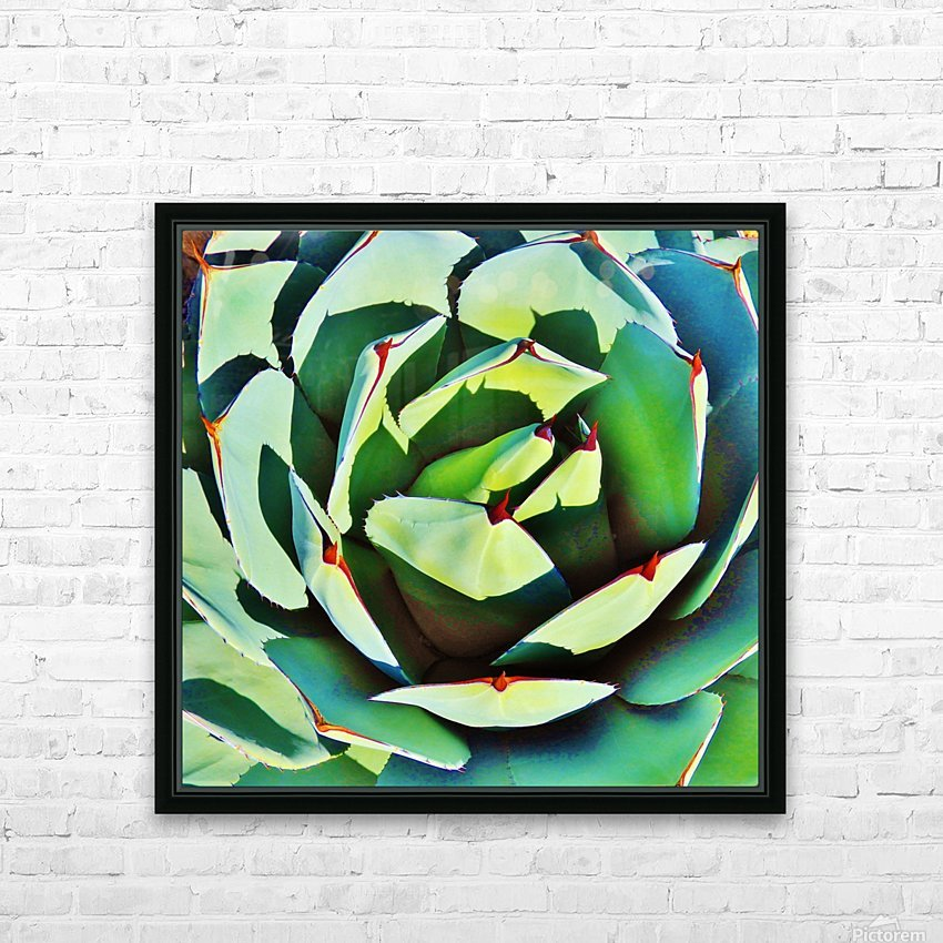 Succulent HD Sublimation Metal print with Decorating Float Frame (BOX)