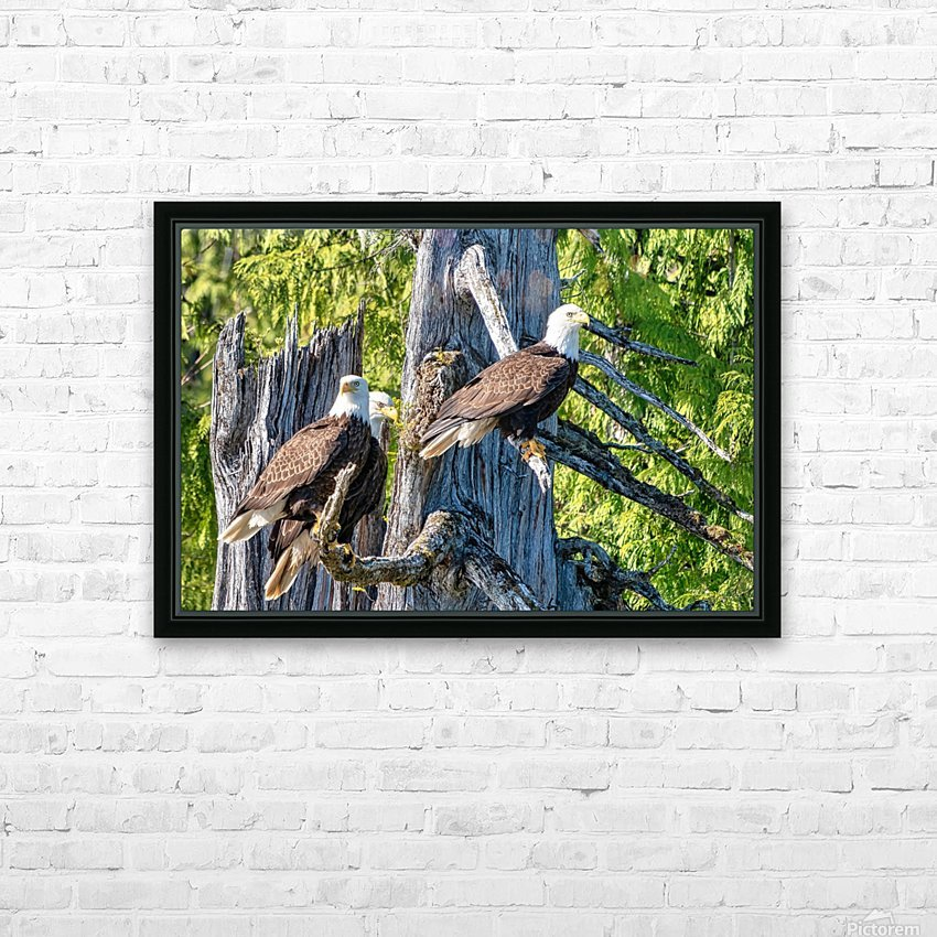 Eagle Tree HD Sublimation Metal print with Decorating Float Frame (BOX)