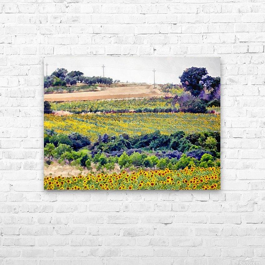 Sunflower Landscape HD Sublimation Metal print with Decorating Float Frame (BOX)