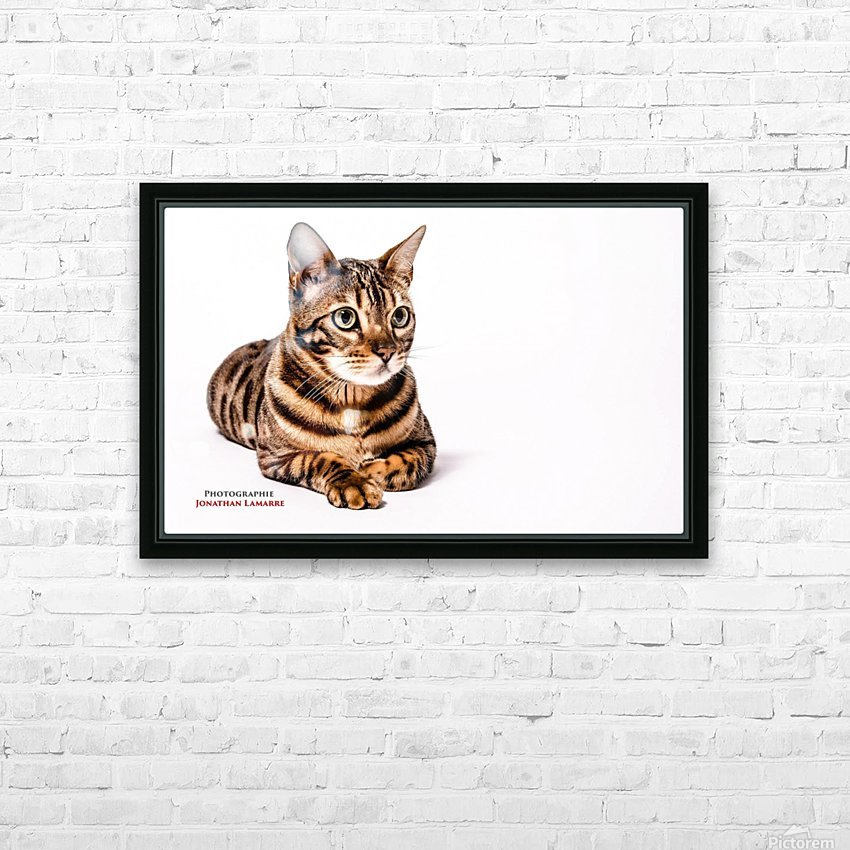 Cat life HD Sublimation Metal print with Decorating Float Frame (BOX)