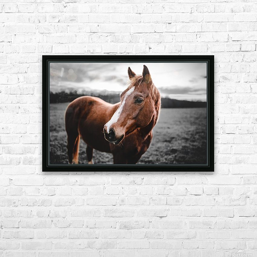 Shining Horse HD Sublimation Metal print with Decorating Float Frame (BOX)