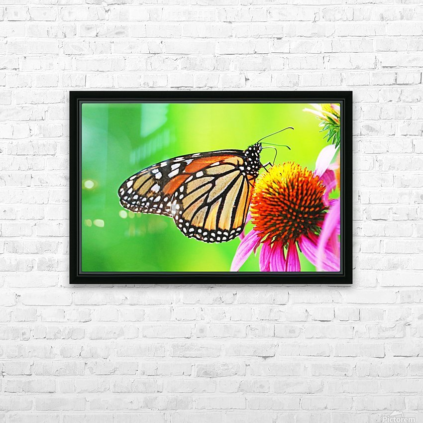 The Beauty Of The Monarch Butterfly HD Sublimation Metal print with Decorating Float Frame (BOX)
