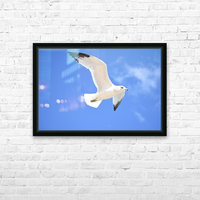 Seagull Overhead HD Sublimation Metal print with Decorating Float Frame (BOX)
