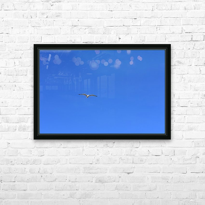 Hovering Seagull HD Sublimation Metal print with Decorating Float Frame (BOX)