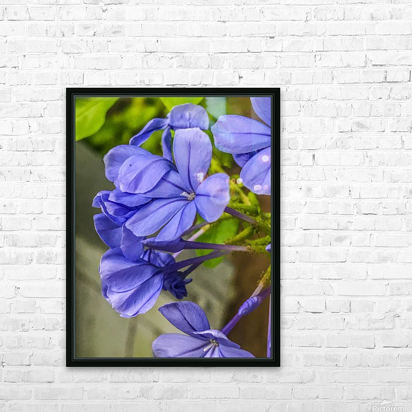 Purple Flowers HD Sublimation Metal print with Decorating Float Frame (BOX)