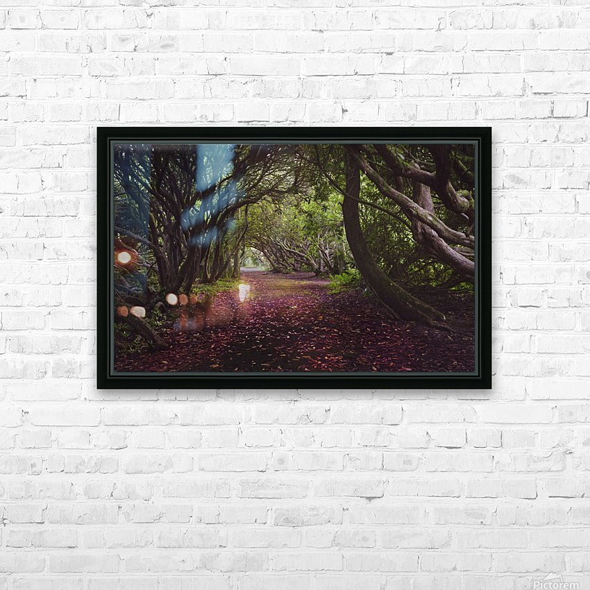 Rhododendron arched walkway HD Sublimation Metal print with Decorating Float Frame (BOX)