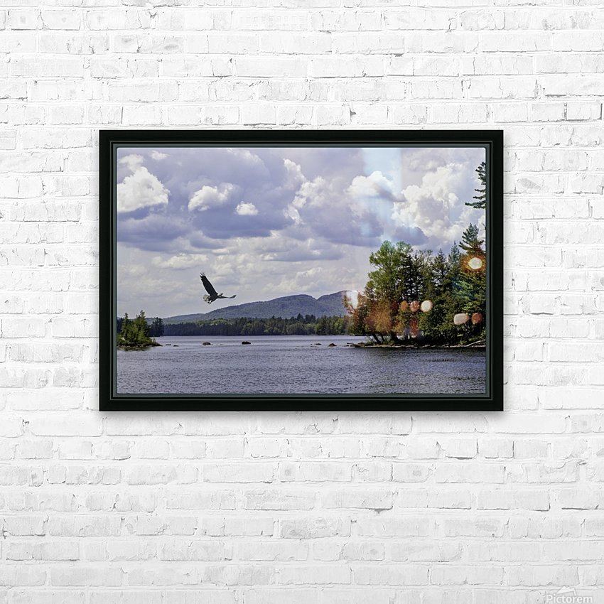 Eagle on Lake HD Sublimation Metal print with Decorating Float Frame (BOX)