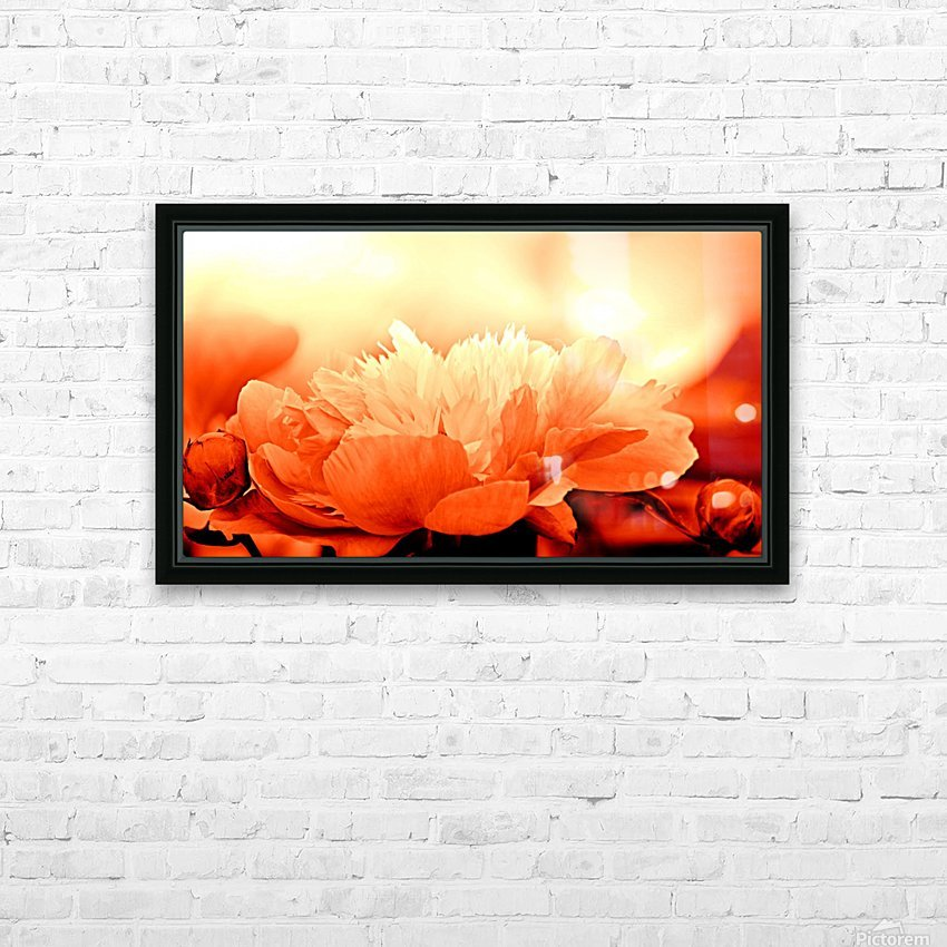 Heavenly Peony Orange HD Sublimation Metal print with Decorating Float Frame (BOX)