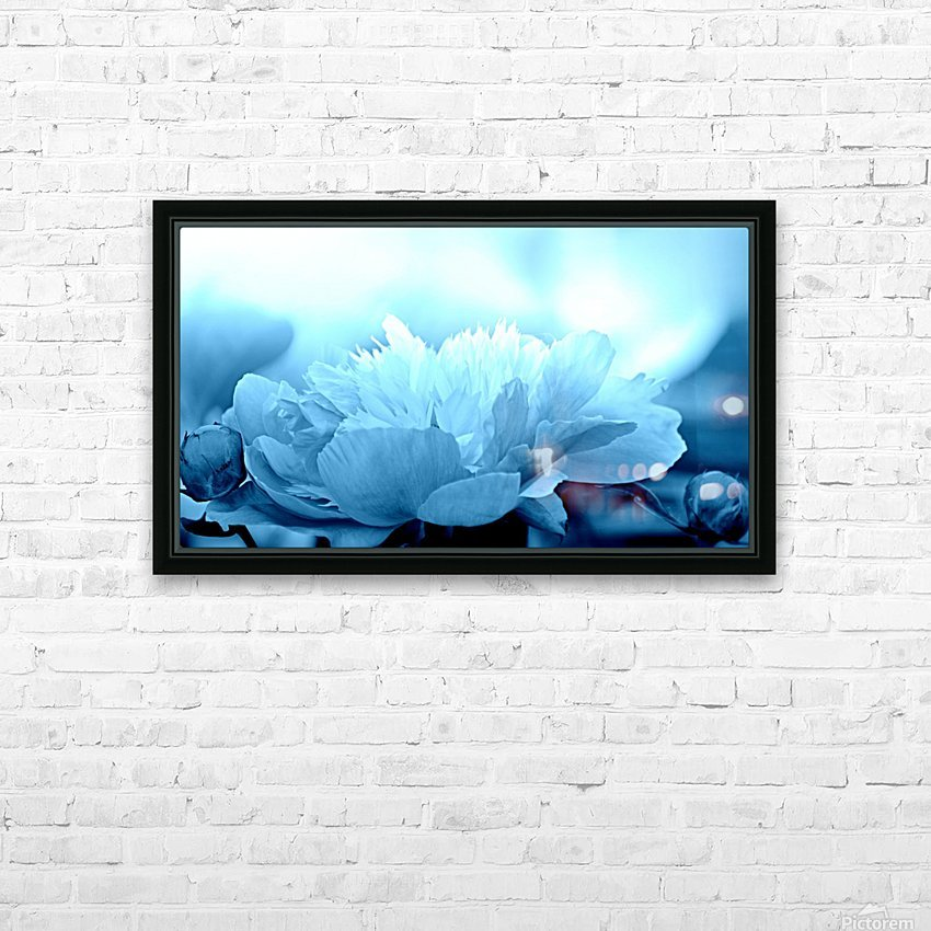 Heavenly Peony Aqua Blue HD Sublimation Metal print with Decorating Float Frame (BOX)