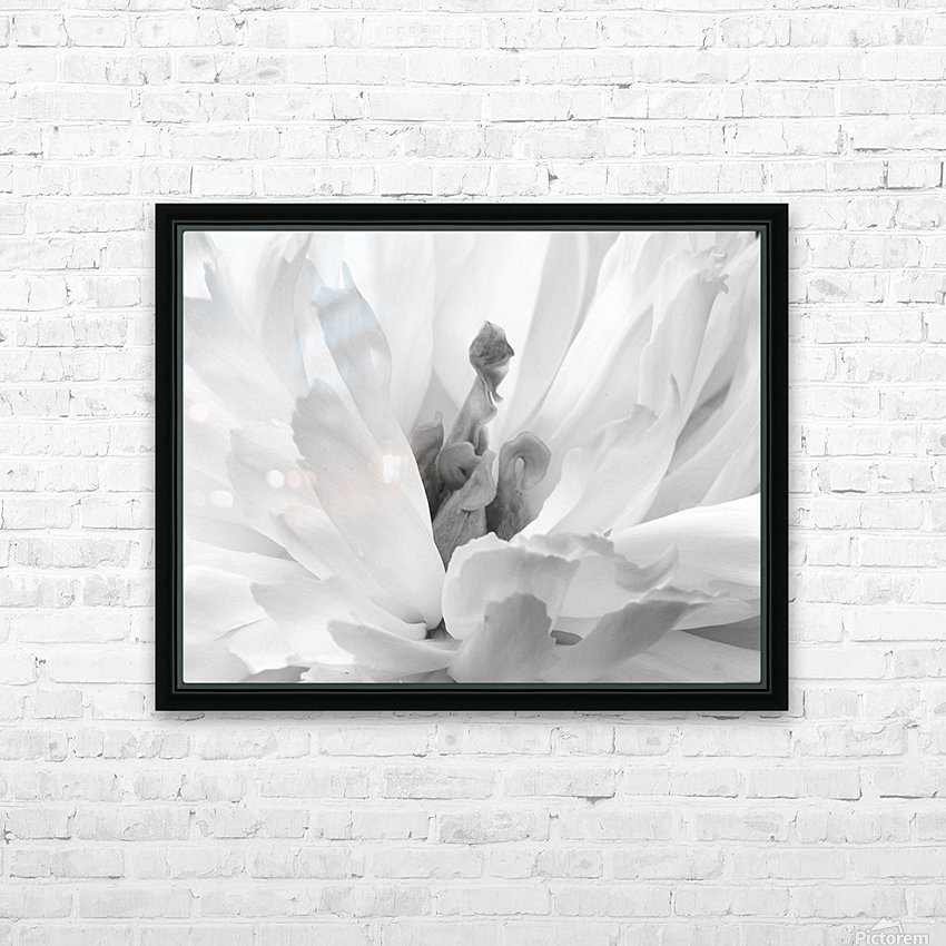 Peony III Black and White HD Sublimation Metal print with Decorating Float Frame (BOX)