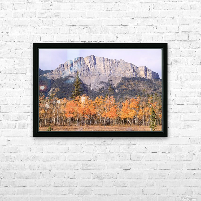Yamnuska In Fall IMG_3238_1  HD Sublimation Metal print with Decorating Float Frame (BOX)