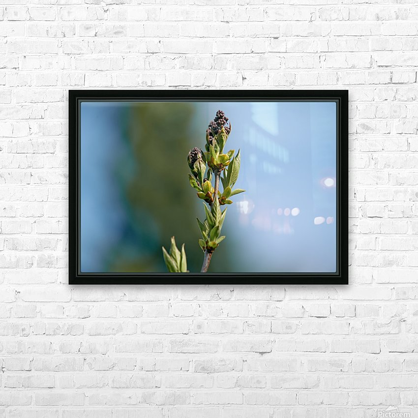 Wild Flowers 3 HD Sublimation Metal print with Decorating Float Frame (BOX)