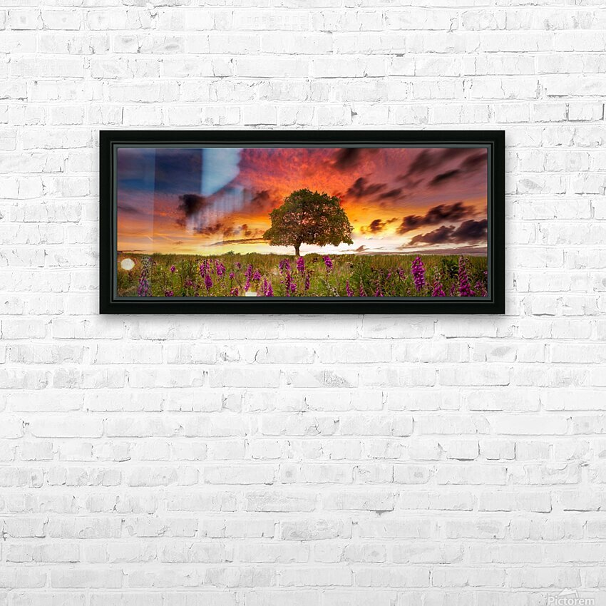 Foxgloves at sunset HD Sublimation Metal print with Decorating Float Frame (BOX)