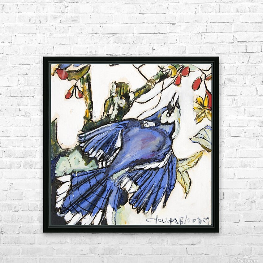 Louisiana Blue Jay Study on Wood HD Sublimation Metal print with Decorating Float Frame (BOX)