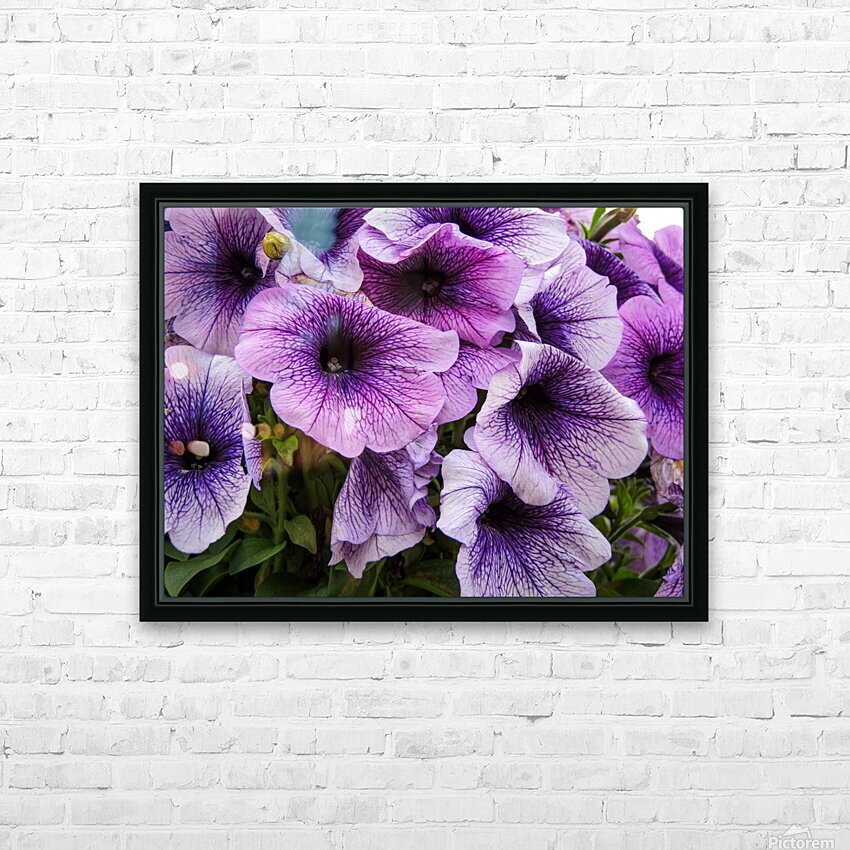 Purple Flower HD Sublimation Metal print with Decorating Float Frame (BOX)