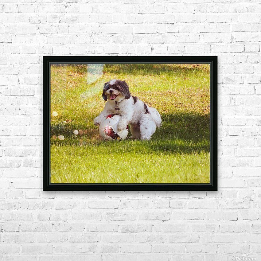 Ball Humpin HD Sublimation Metal print with Decorating Float Frame (BOX)