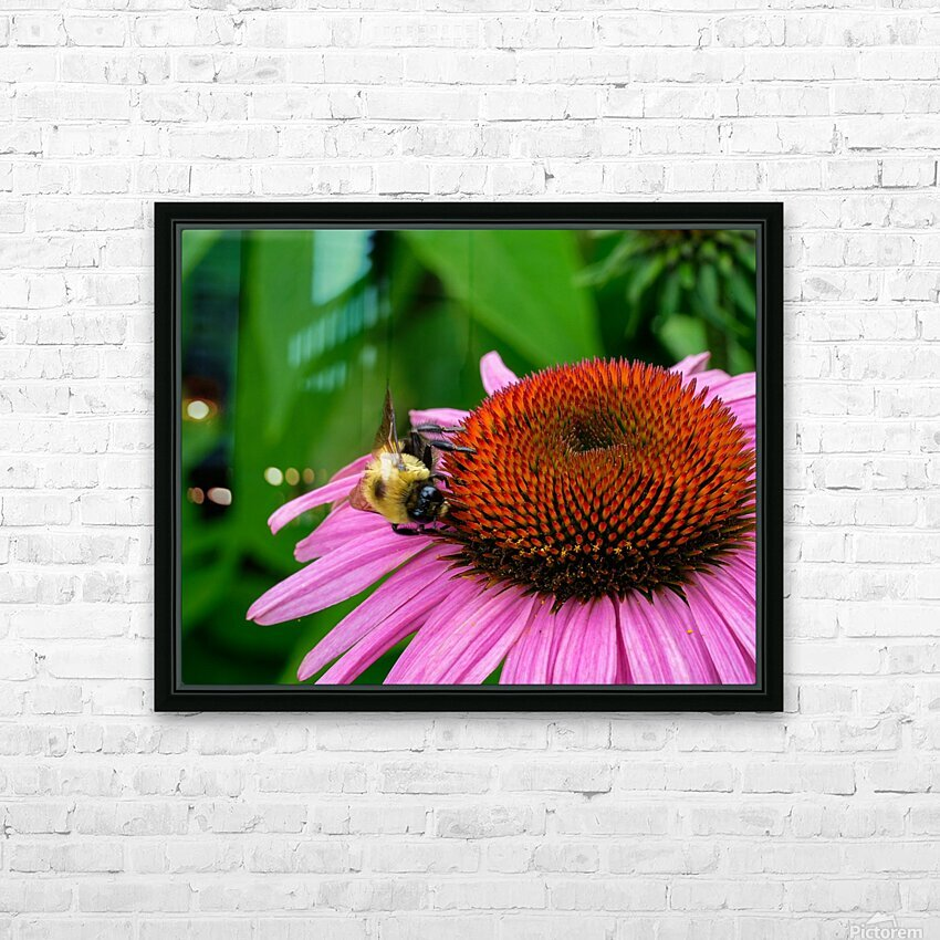 Bee HD Sublimation Metal print with Decorating Float Frame (BOX)