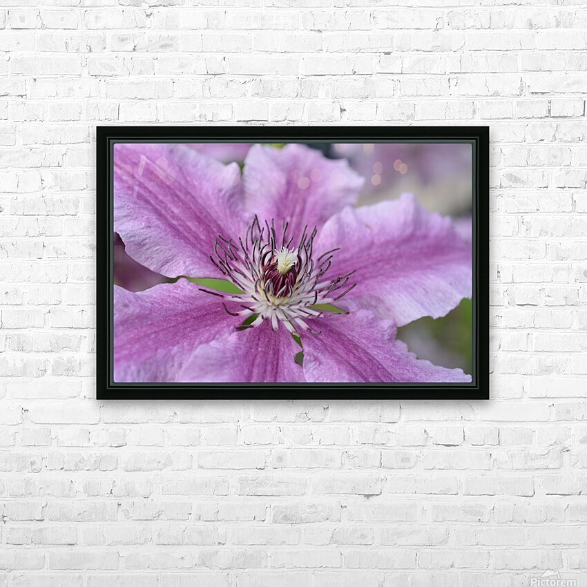 Pink Floral Photograph HD Sublimation Metal print with Decorating Float Frame (BOX)
