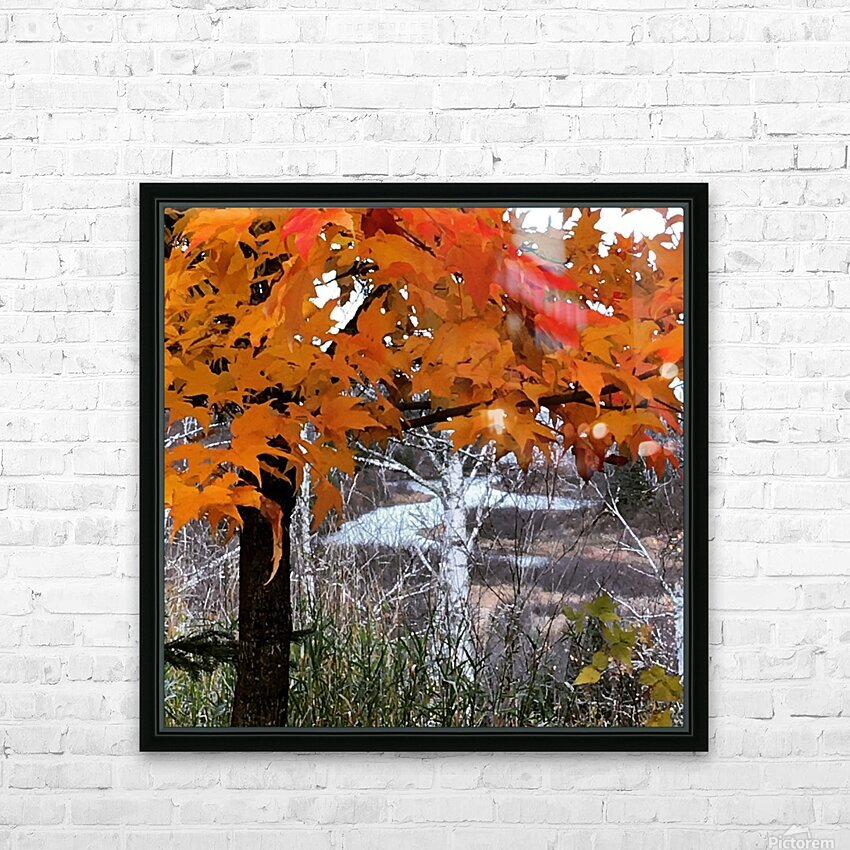Autumn at Lake Superior HD Sublimation Metal print with Decorating Float Frame (BOX)
