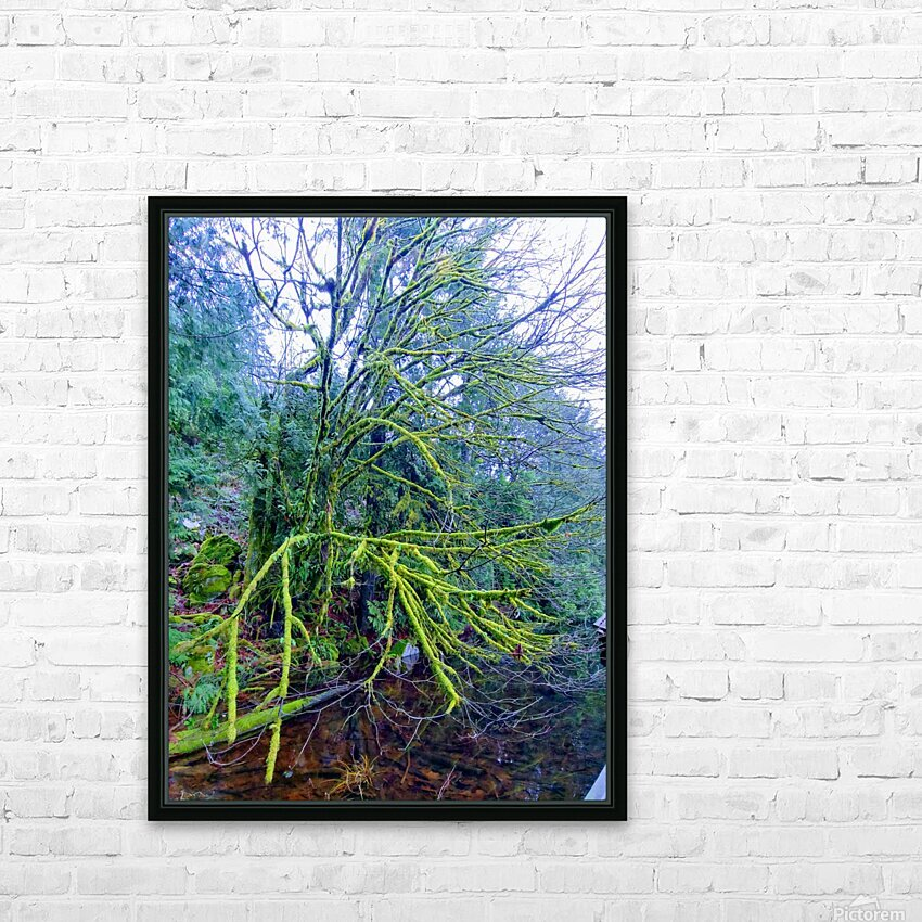 MOSSY BRANCHES HD Sublimation Metal print with Decorating Float Frame (BOX)