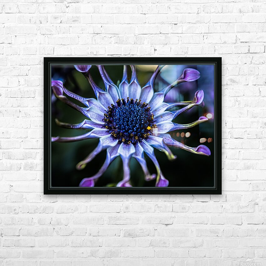 purple alien HD Sublimation Metal print with Decorating Float Frame (BOX)