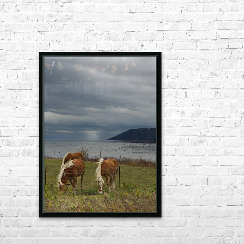 Chevaux HD Sublimation Metal print with Decorating Float Frame (BOX)