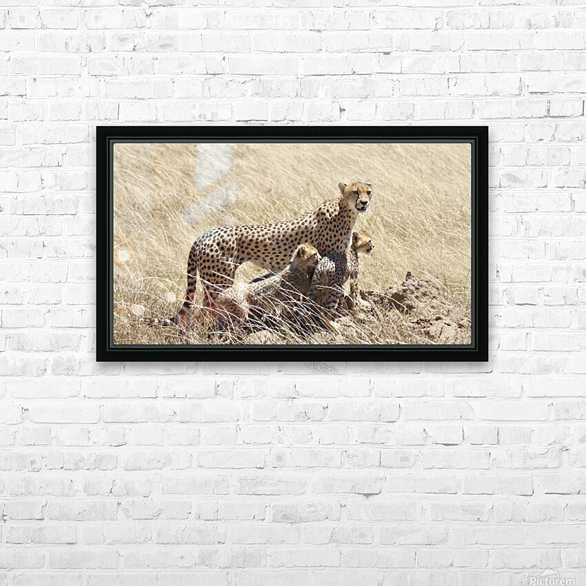 Mama Cheetah HD Sublimation Metal print with Decorating Float Frame (BOX)