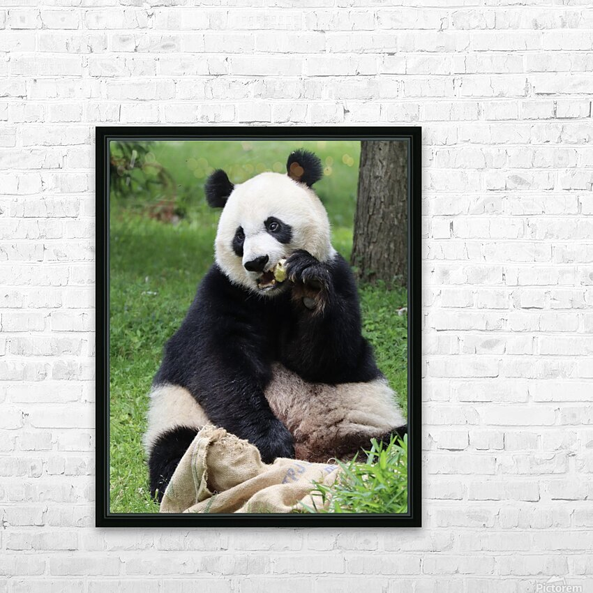 Panda HD Sublimation Metal print with Decorating Float Frame (BOX)
