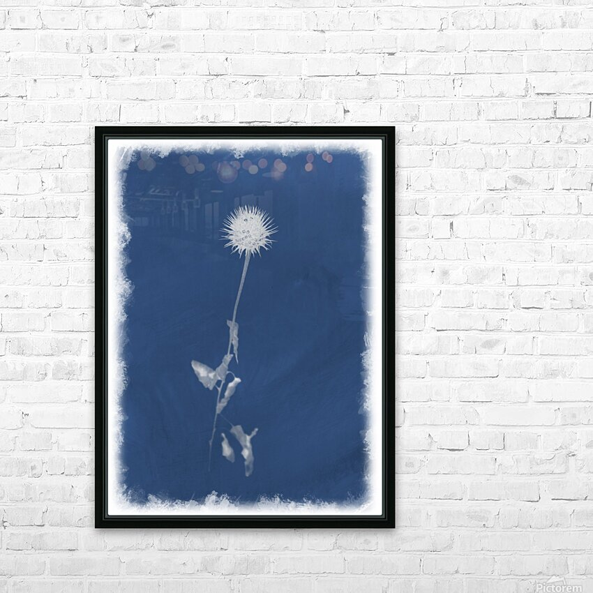 Cyanotype 101 HD Sublimation Metal print with Decorating Float Frame (BOX)