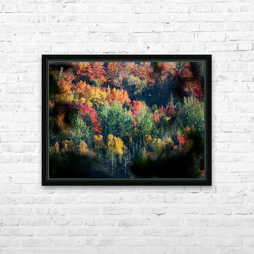 autumn abstract view HD Sublimation Metal print with Decorating Float Frame (BOX)