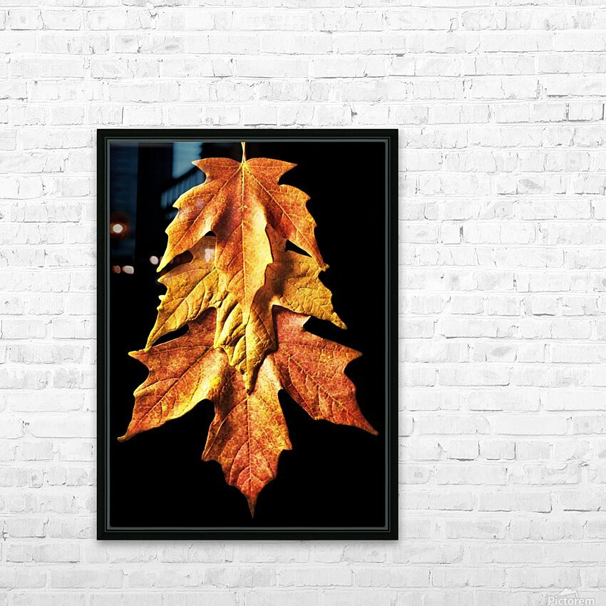 Fall Maple Leaves 1 HD Sublimation Metal print with Decorating Float Frame (BOX)