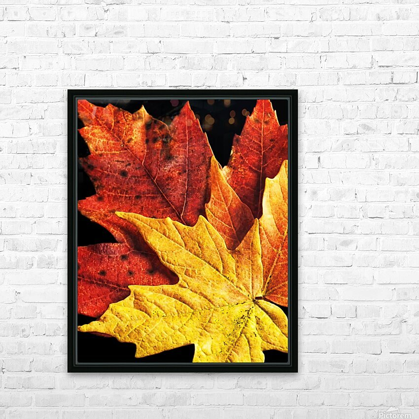 Fall Maple Leaves 2 HD Sublimation Metal print with Decorating Float Frame (BOX)