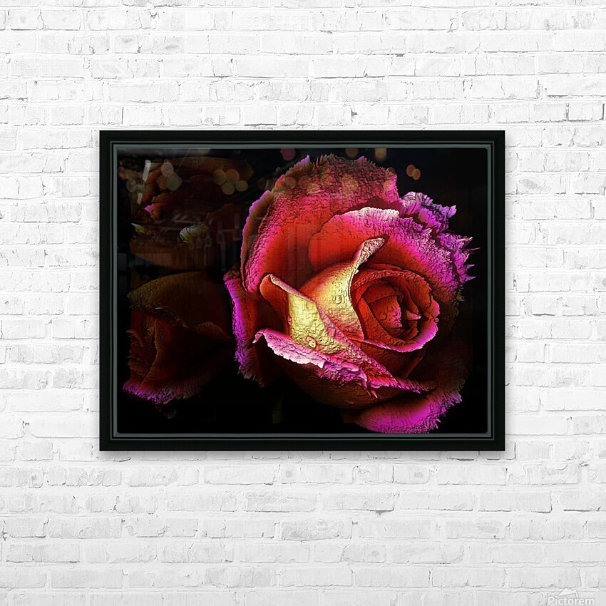 Textured Rose HD Sublimation Metal print with Decorating Float Frame (BOX)