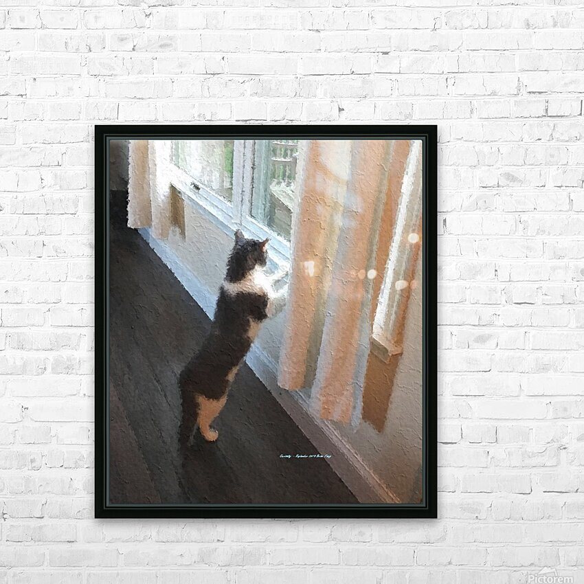Curiosity HD Sublimation Metal print with Decorating Float Frame (BOX)