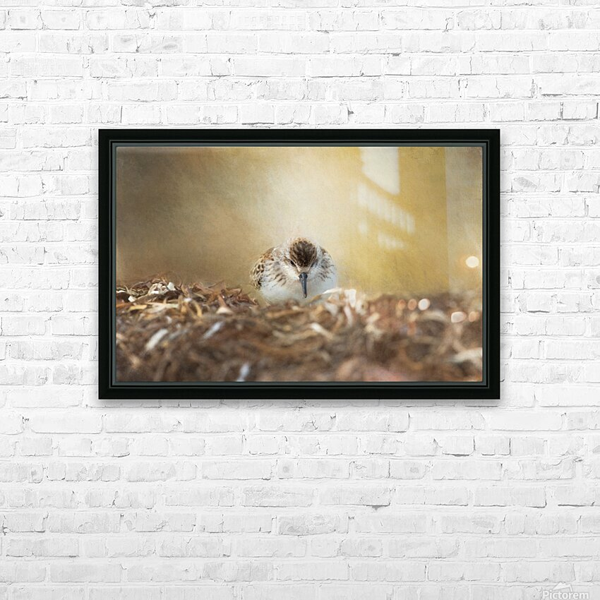 Simplicity of Nature HD Sublimation Metal print with Decorating Float Frame (BOX)