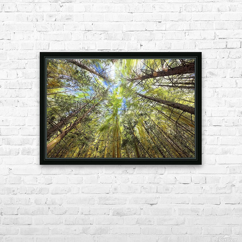 Forest Particles HD Sublimation Metal print with Decorating Float Frame (BOX)