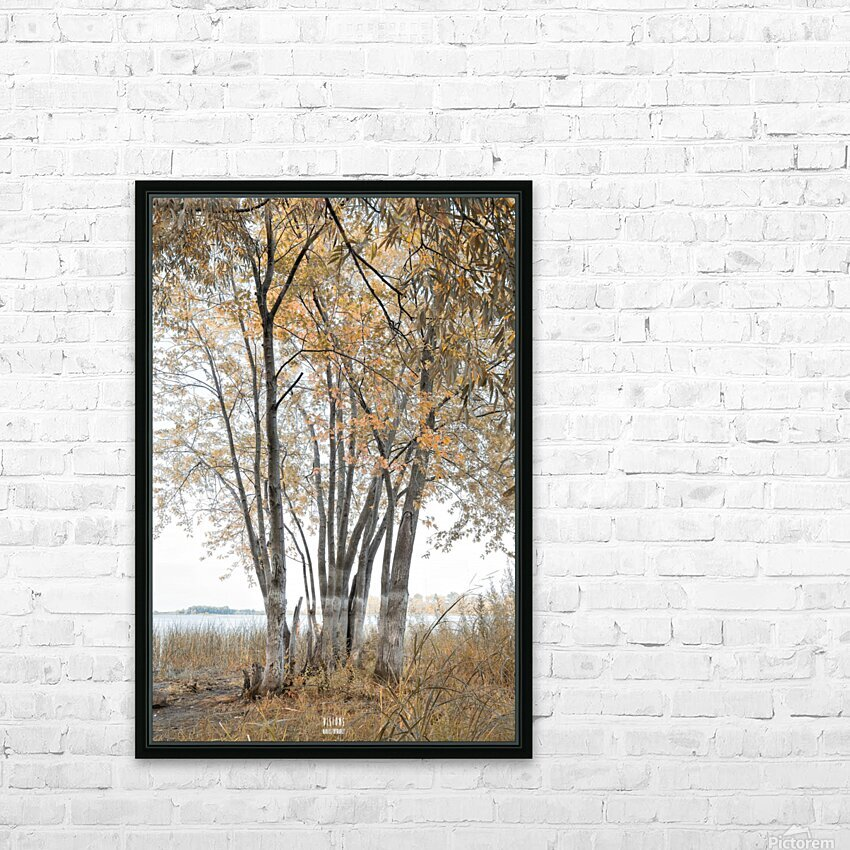 Lumiere automnale 2 HD Sublimation Metal print with Decorating Float Frame (BOX)