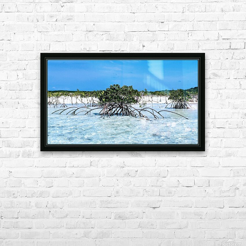Mangroves in Estuary HD Sublimation Metal print with Decorating Float Frame (BOX)