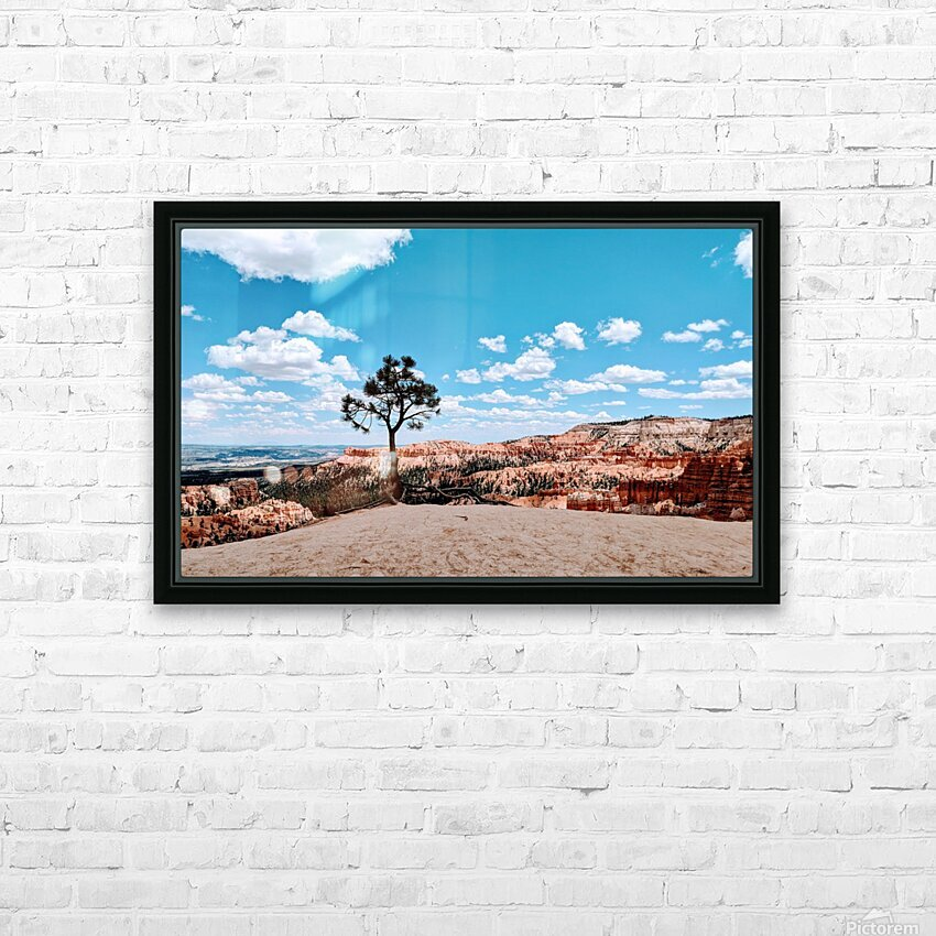 Bryce Canyon V HD Sublimation Metal print with Decorating Float Frame (BOX)