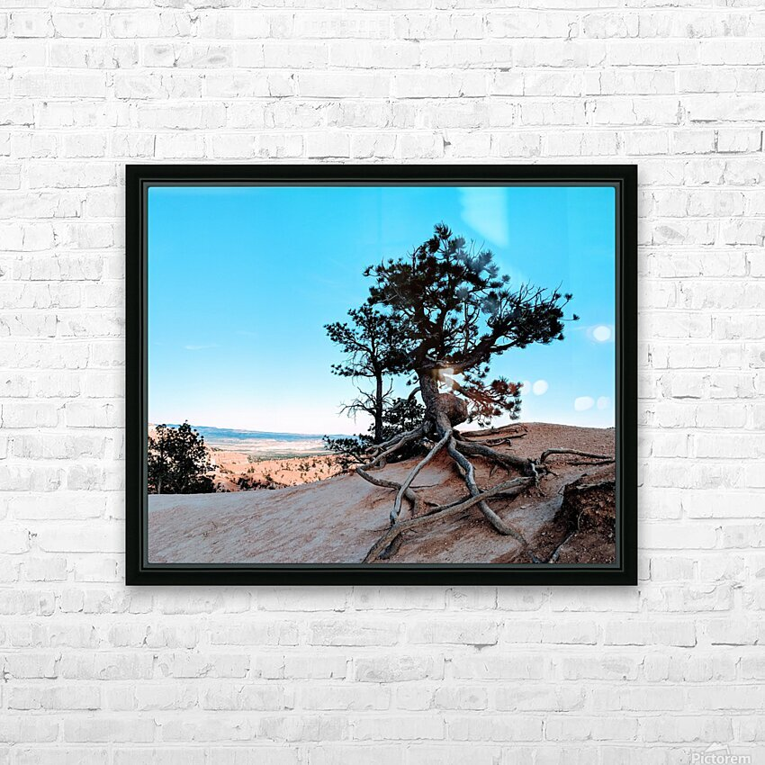 Bryce Canyon IV HD Sublimation Metal print with Decorating Float Frame (BOX)