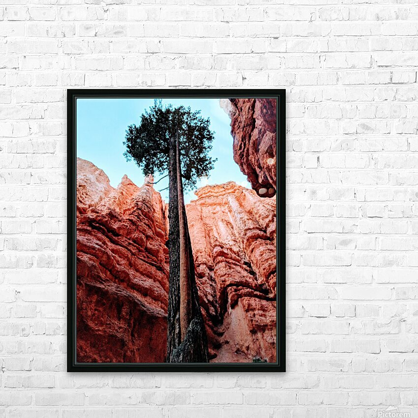 Bryce Canyon II HD Sublimation Metal print with Decorating Float Frame (BOX)