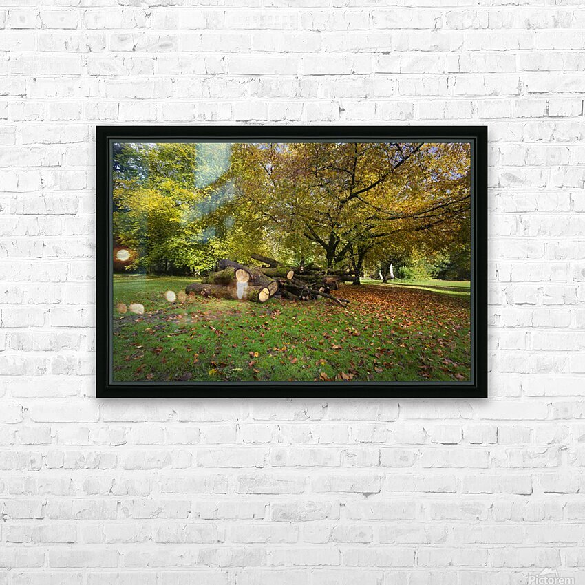 Autumn leaves and cut trees HD Sublimation Metal print with Decorating Float Frame (BOX)
