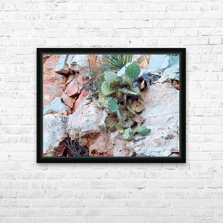 Cactus HD sublimation métal imprimé avec décoration flotteur cadre (boîte)