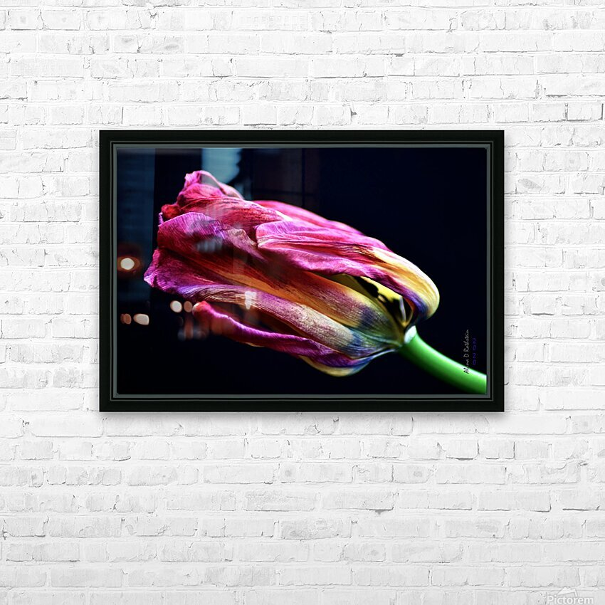 Tulip 4 HD Sublimation Metal print with Decorating Float Frame (BOX)