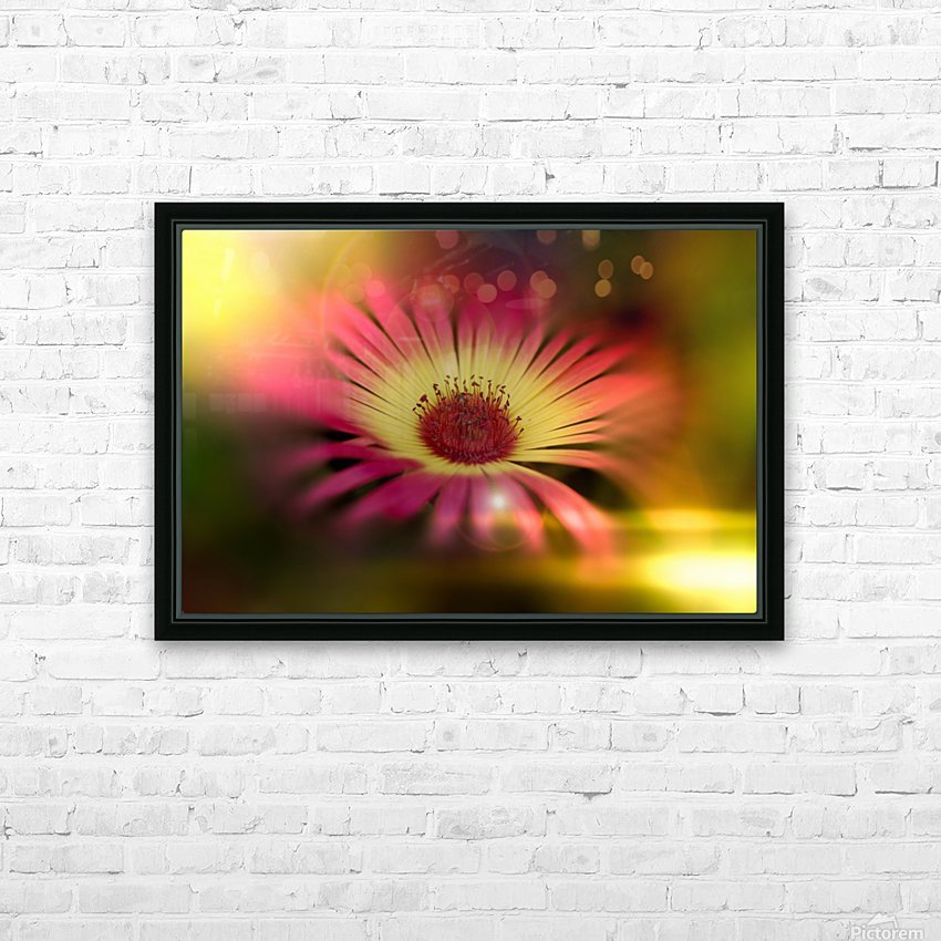 little sunshine HD Sublimation Metal print with Decorating Float Frame (BOX)