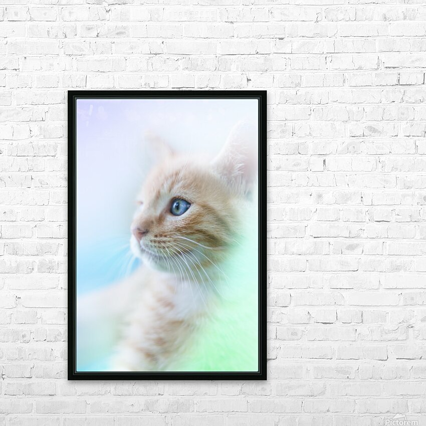 catshadow HD Sublimation Metal print with Decorating Float Frame (BOX)